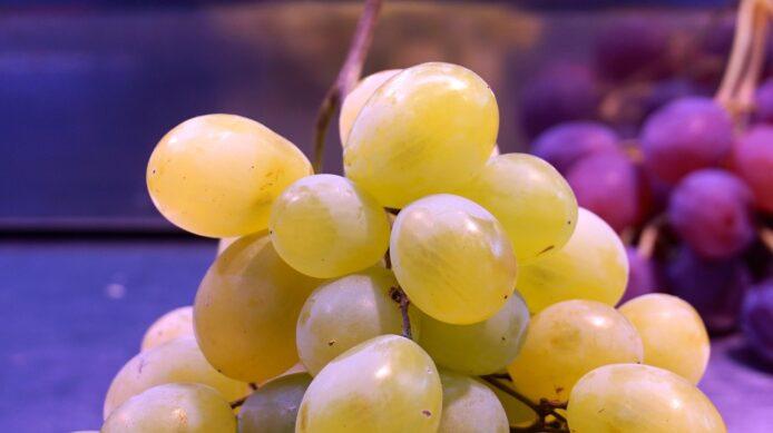Виноград  Афус Али