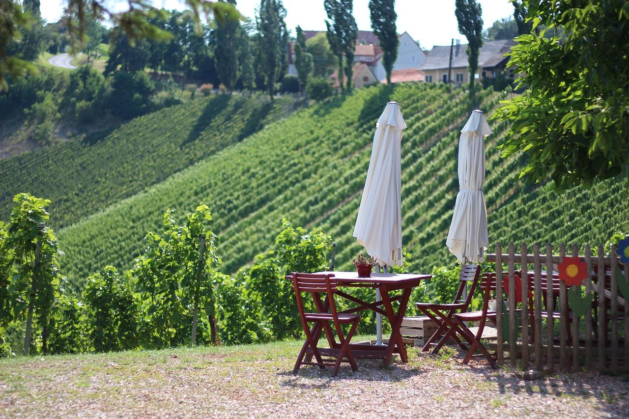 Виноград в Австрии