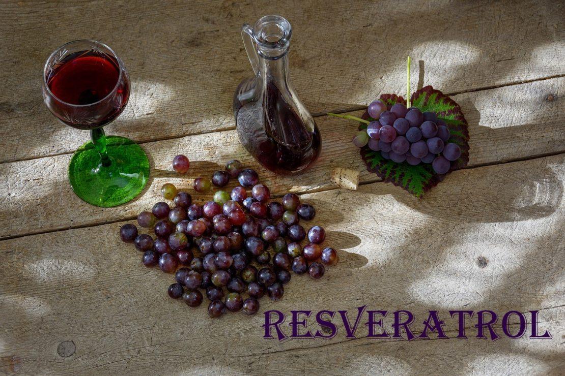 Какие вина содержат больше всего ресвератрола