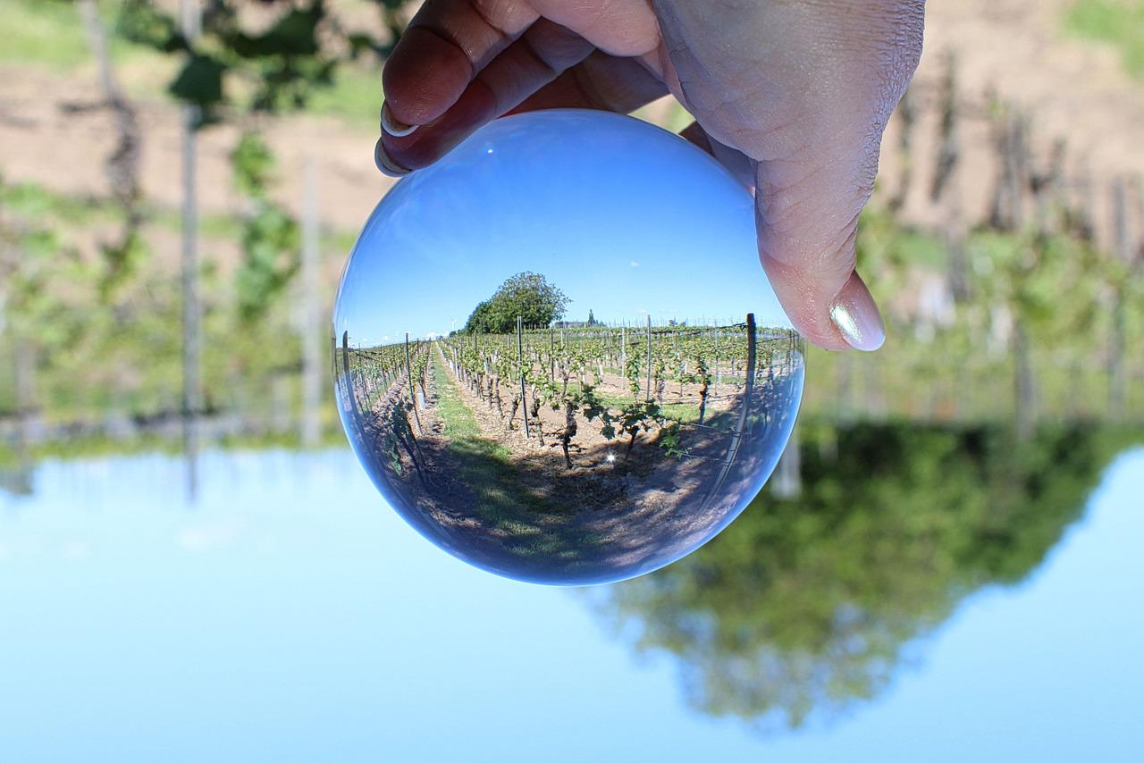 Семь виноградников в невозможных местах
