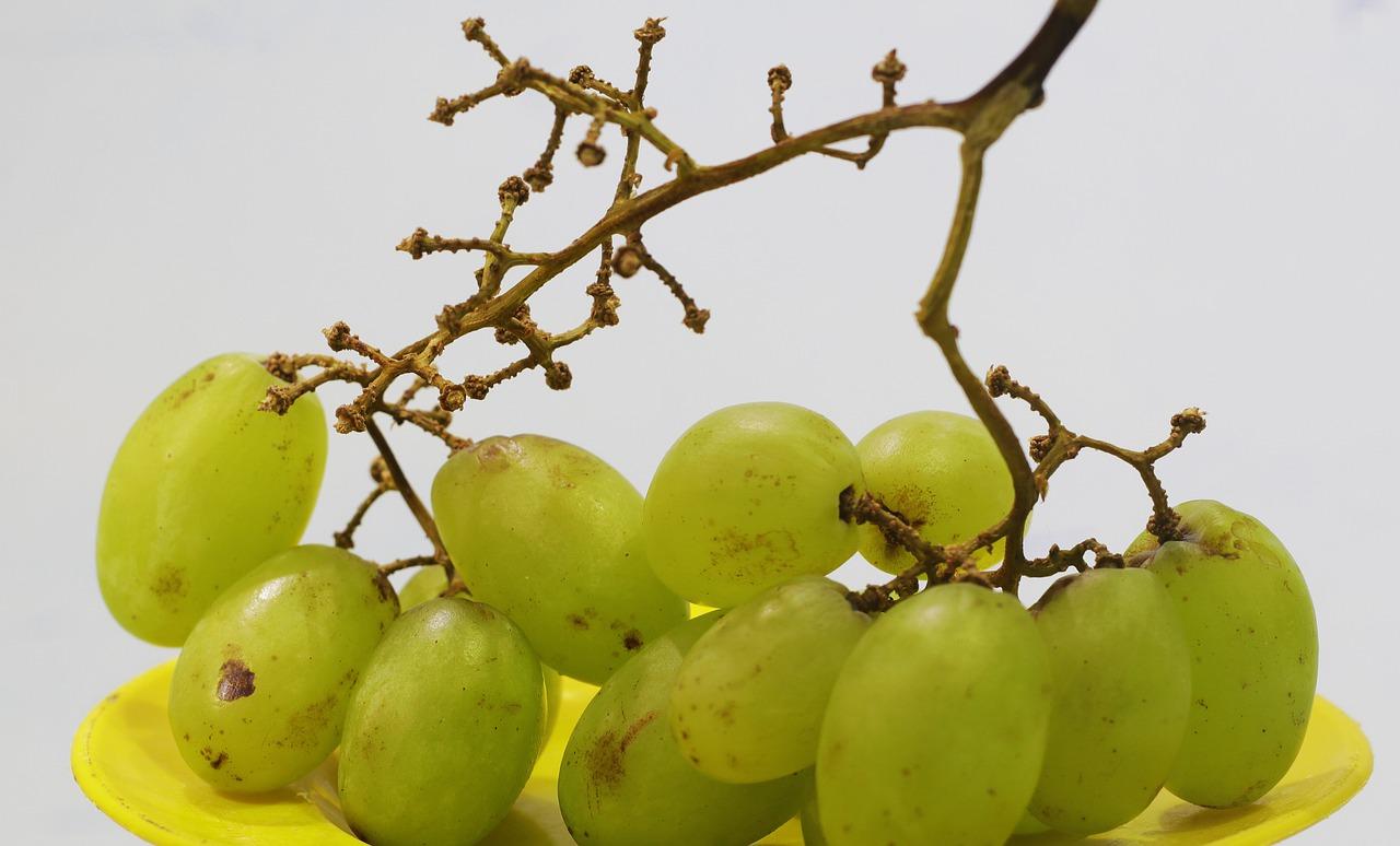 Гребень винограда